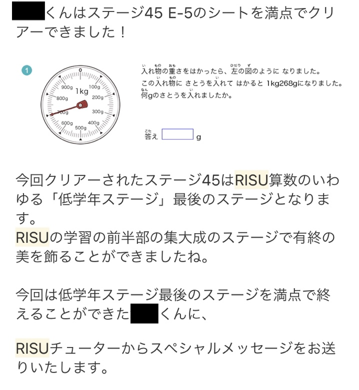 RISU算数 低学年
