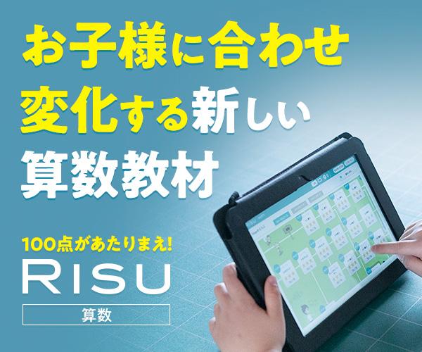 RISU算数 詳細
