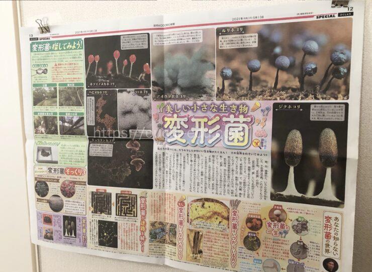 読売KODOMO新聞 特集ページ